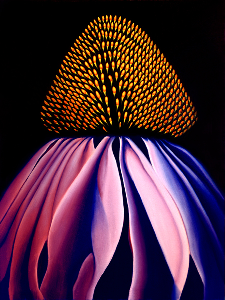 Echinacea Flower Painting by Anni Adkins
