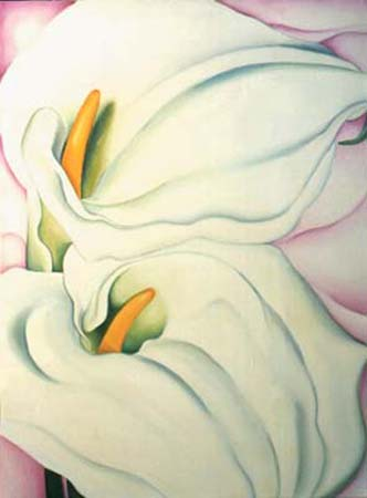 Georgia's Calla Lily - Flower Painting  by Anni Adkins